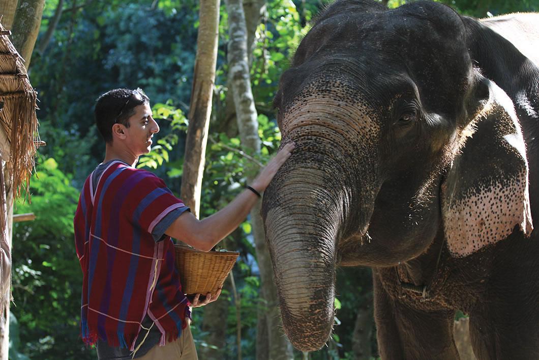 Savant feeding an elephant.