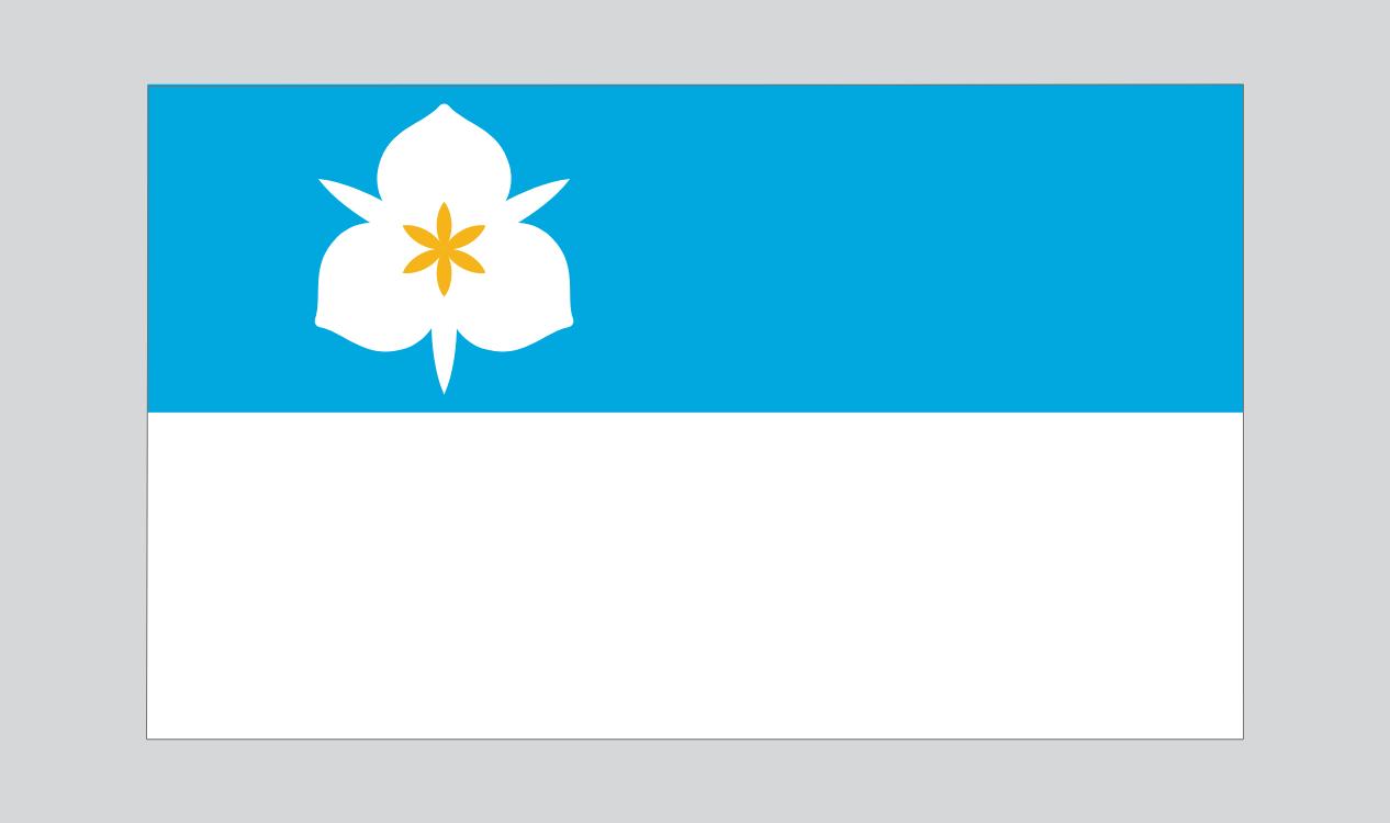 Salt Lake City flag.