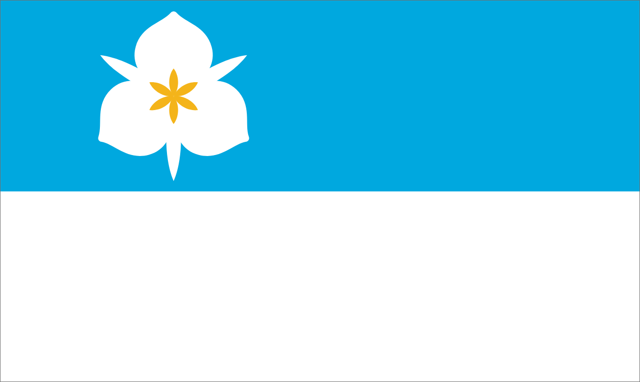 Salt Lake City flag
