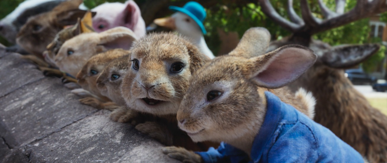 Still from Peter Rabbit 2 movie. Rabbits looking over a wall.